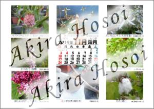 2019年カレンダー11月